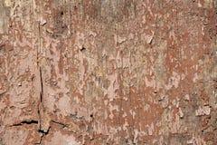 Priorità bassa di legno di Grunge Immagini Stock