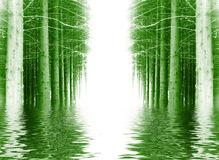 Priorità bassa di legno di inverno Immagine Stock Libera da Diritti