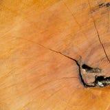 Priorità bassa di legno di struttura del primo piano Immagini Stock