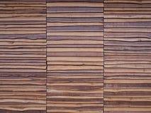 Priorità bassa di legno di struttura della parete Fotografie Stock