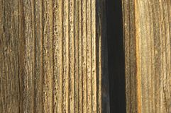 Priorità bassa di legno II Fotografia Stock Libera da Diritti