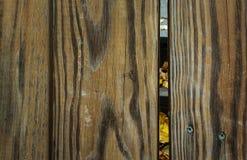 Priorità bassa di legno strutturata Fotografie Stock Libere da Diritti