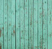 Priorità bassa di legno verde della rete fissa Fotografia Stock