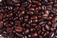 Priorità bassa di macro dei chicchi di caffè Fotografia Stock Libera da Diritti