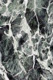 Priorità bassa di marmo verde Fotografia Stock