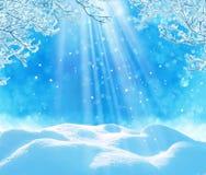 Priorità bassa di natale di inverno Fotografie Stock Libere da Diritti