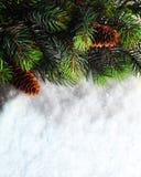Priorità bassa di natale di inverno Pensionante di Natale con il ramo di albero dell'abete con i coni sulla neve Concetto di vaca Immagine Stock Libera da Diritti