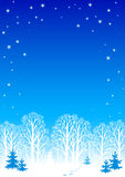 Priorità bassa di notte di inverno Fotografia Stock Libera da Diritti