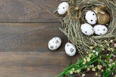 Priorità bassa di Pasqua Le uova di Pasqua felici hanno fatto soffrire inoltre il rabbino Fotografia Stock Libera da Diritti