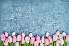 Priorità bassa di Pasqua Uova di Pasqua decorative e tulipani rosa Scheda di festa Immagine Stock