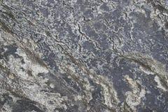 Priorità bassa di pietra del granito Immagini Stock
