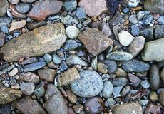 Priorità bassa di pietra rocciosa Immagini Stock Libere da Diritti