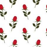 Priorità bassa di rosa di colore rosso Immagini Stock