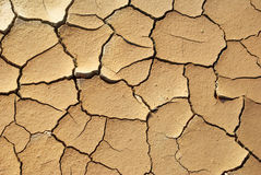 Priorità bassa di siccità Fotografia Stock Libera da Diritti