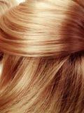 Priorità bassa di struttura dei capelli di punto culminante Fotografia Stock Libera da Diritti