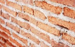 Priorità bassa di struttura del muro di mattoni Immagini Stock Libere da Diritti