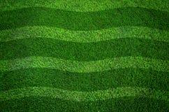 Priorità bassa di struttura dell'erba verde e righe ondulate Fotografia Stock