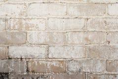 Priorità bassa di struttura della parete Fotografia Stock