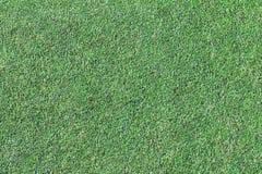 Priorità bassa di un'erba verde Immagini Stock