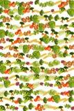 Priorità bassa di verdure Immagine Stock Libera da Diritti