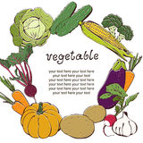 Priorità bassa di verdure con la cornice di testo illustrazione di stock