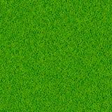 Priorità bassa di vettore dell'erba verde Fotografie Stock Libere da Diritti