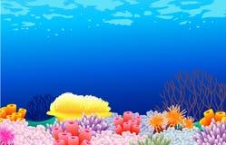 Priorità bassa di vita di mare Fotografia Stock