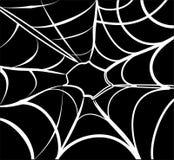 Priorità bassa di Web di ragno Fotografia Stock