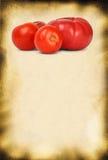 Priorità bassa e pomodori di carta Immagine Stock