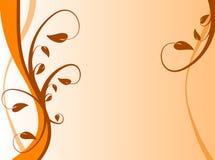 Priorità bassa floreale arancione Fotografie Stock Libere da Diritti