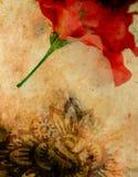 Priorità bassa floreale astratta Fotografia Stock
