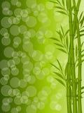 Priorità bassa floreale astratta con un bambù Fotografia Stock