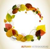 Priorità bassa floreale astratta di autunno illustrazione vettoriale
