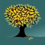 Priorità bassa floreale dell'albero Fotografie Stock