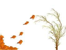 Priorità bassa floreale di autunno Immagine Stock