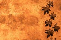 Priorità bassa floreale gialla Fotografia Stock
