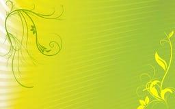 Priorità bassa floreale gialla verde Fotografia Stock Libera da Diritti