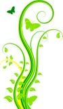 Priorità bassa floreale verde Fotografie Stock Libere da Diritti