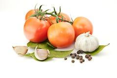 Priorità bassa fresca della vitamina con alloro Fotografia Stock Libera da Diritti