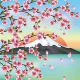 Priorità bassa giapponese con sakura Fotografia Stock