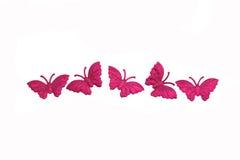 Priorità bassa isolata della farfalla Fotografia Stock