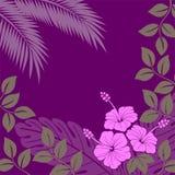 Priorità bassa lilla con le piante esotiche astratte Fotografie Stock