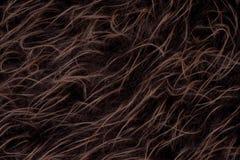 Priorità bassa lunga decorativa della pelliccia Immagini Stock Libere da Diritti