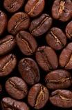 Priorità bassa a macroistruzione dei coffebeans Fotografia Stock