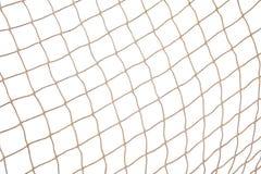 Priorità bassa netta dei pesci fotografia stock libera da diritti