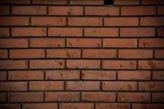 Priorità bassa o struttura del muro di mattoni Immagini Stock Libere da Diritti