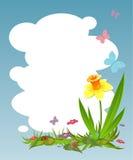 Priorità bassa per il vostro testo con il daffodil Fotografie Stock