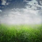 Priorità bassa piovosa della sorgente Fotografie Stock