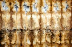 Priorità bassa Red-haired della pelliccia di volpe Immagini Stock Libere da Diritti