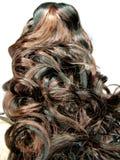 Priorità bassa riccia di struttura dei capelli di punto culminante Fotografia Stock Libera da Diritti
